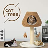 Advwin 64CM Cat Tree Scratching Post Scratcher Tower Condo Gym Toy House Furniture Wood (Beige)