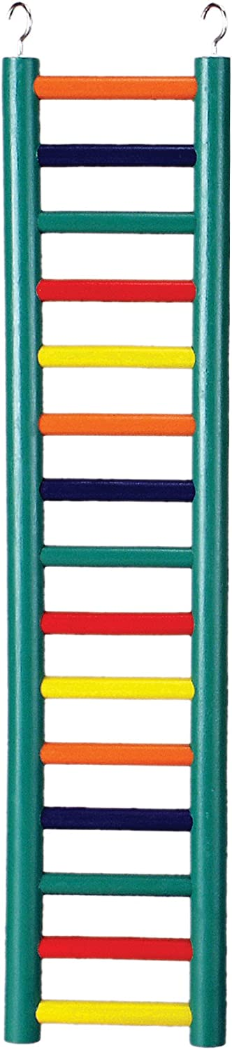 Prevue Pet Products BPV01139 Carpenter Creations Hardwood Bird Ladder with 15 Rungs, 24-Inch, Colors Vary : Pet Toys : Pet Supplies