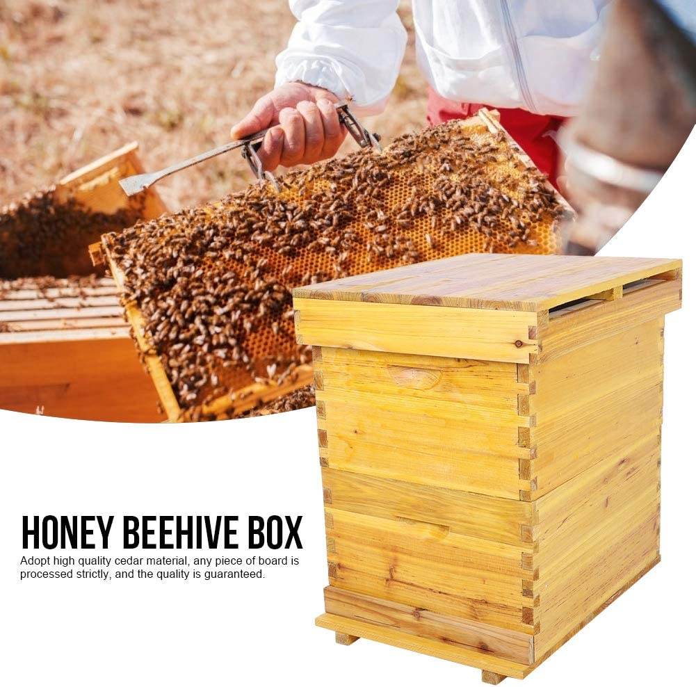 Honey Keeper Beehive,Super Brood Beehive Box Moisture-proof Bee Hive House Deluxe Bee Hive Starter Kit Beekeeping Supplies for Honey Bee Hive Frames Beehive