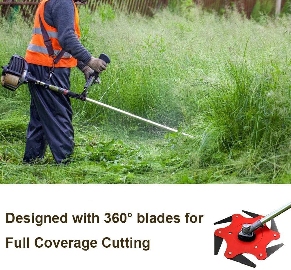 Amazon.com: Diagtree - Cabezal de corte de 6 cuchillas de ...