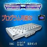 DSunY 2x LEDアクアリウムライト240W塩水ランプ、サンゴ礁海洋魚タンク用、コントローラ1個、3Wブリジューサ、プログラマブル、調光可能