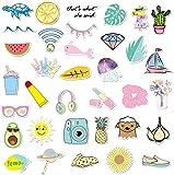 Laptop Stickers - Funny 35 Stickers Pack - Pura Vida Stickers - Water Bottles Stickers - Waterproof - Vinyl Stickers…