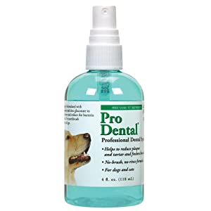 Top Performance ProDental Dental Spray — Easy-to-Use Spray for Cleaning Pets' Teeth, 4 oz.