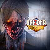 Arizona Sunshine [Online Game Code]