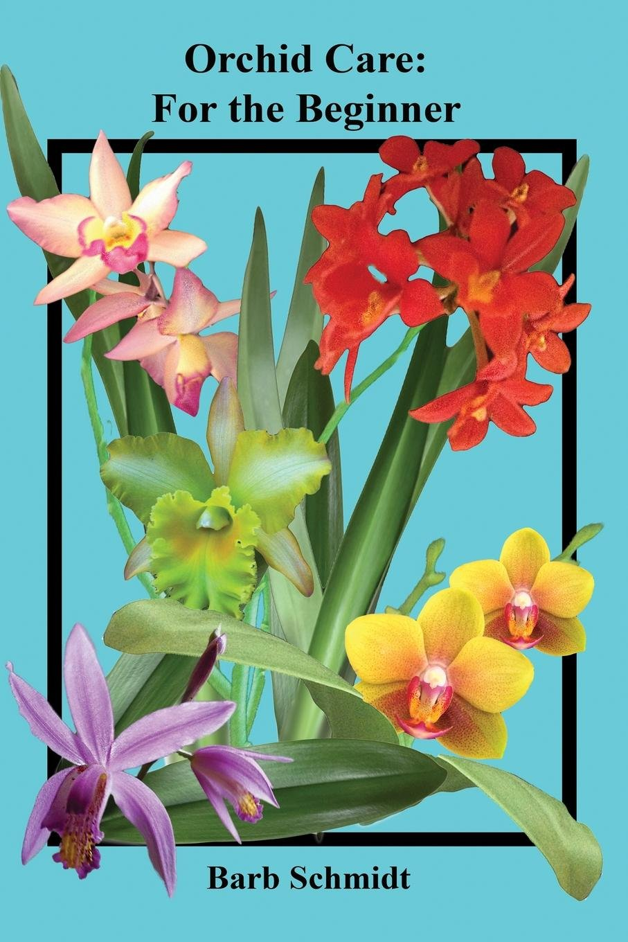 Orchid Care: For the Beginner pdf