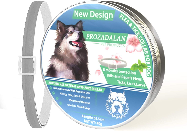 ProHomer Collar Antiparasitario para Perros contra Pulgas(8 Meses Protección), Garrapatas y Mosquitos, Cuello de Control de plagas, Impermeable, (63 cm)