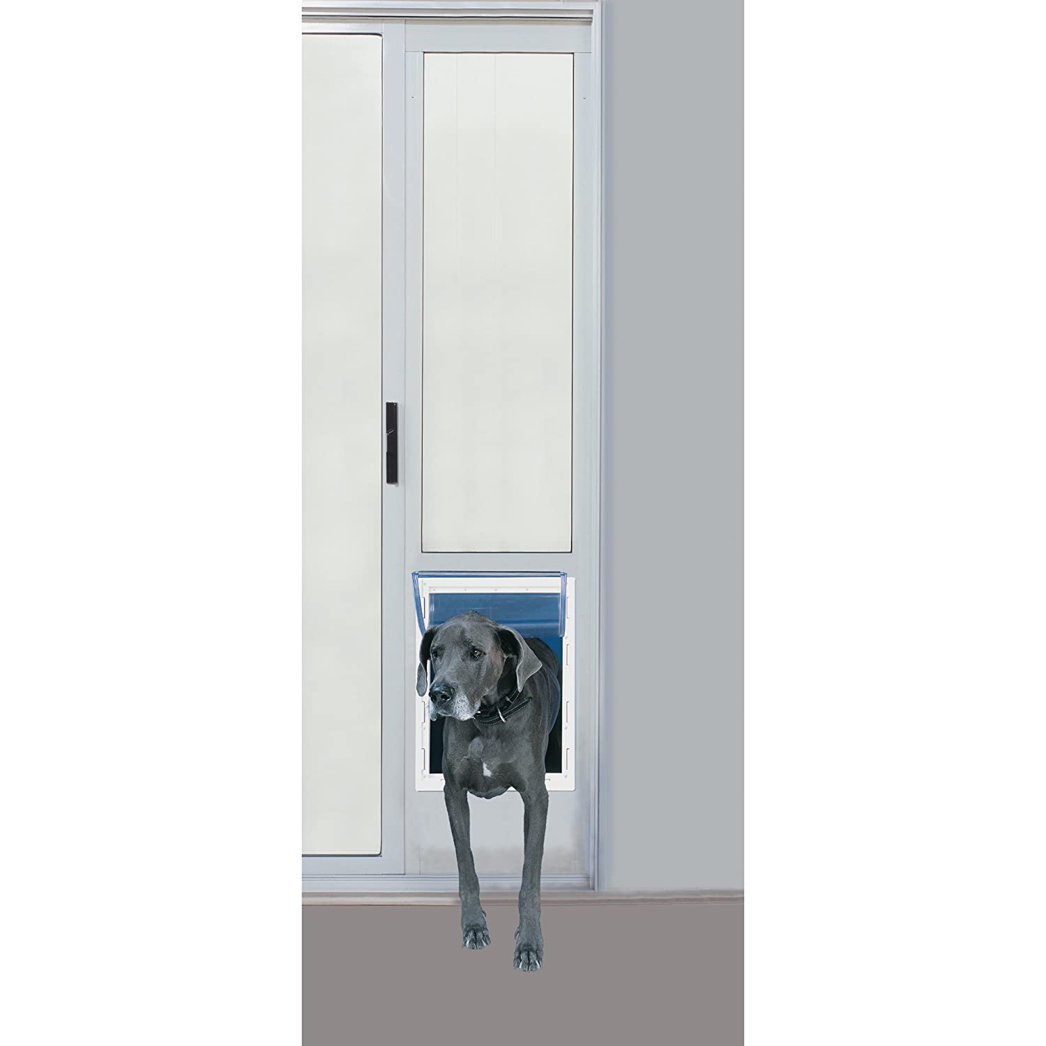 design designs regarding with sliding screen dog doors stair door doggie in decor built best latest