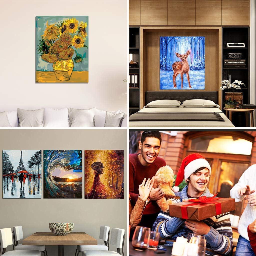 Malerei mit Pinsel Colorwork /Ölgem/älde-Set f/ür Kinder und Erwachsene 40,6 cm B x 63,5 cm L Zeichnung Acryl-Pigment-Red Dress Girl