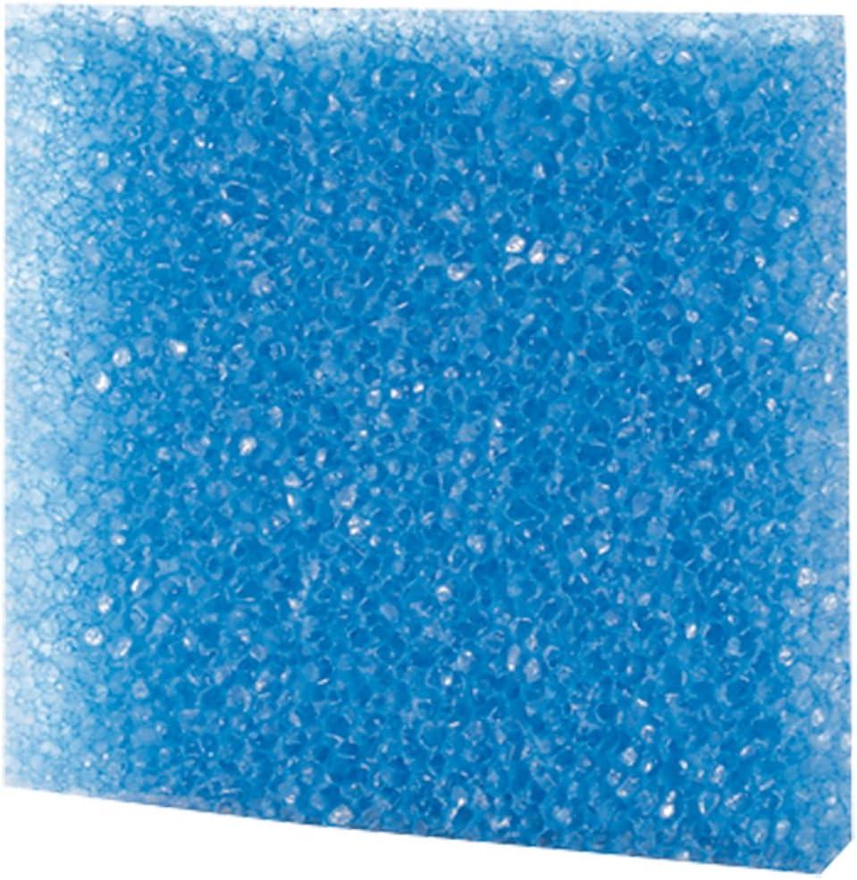 Azul Grueso Hobby Filtro Espuma
