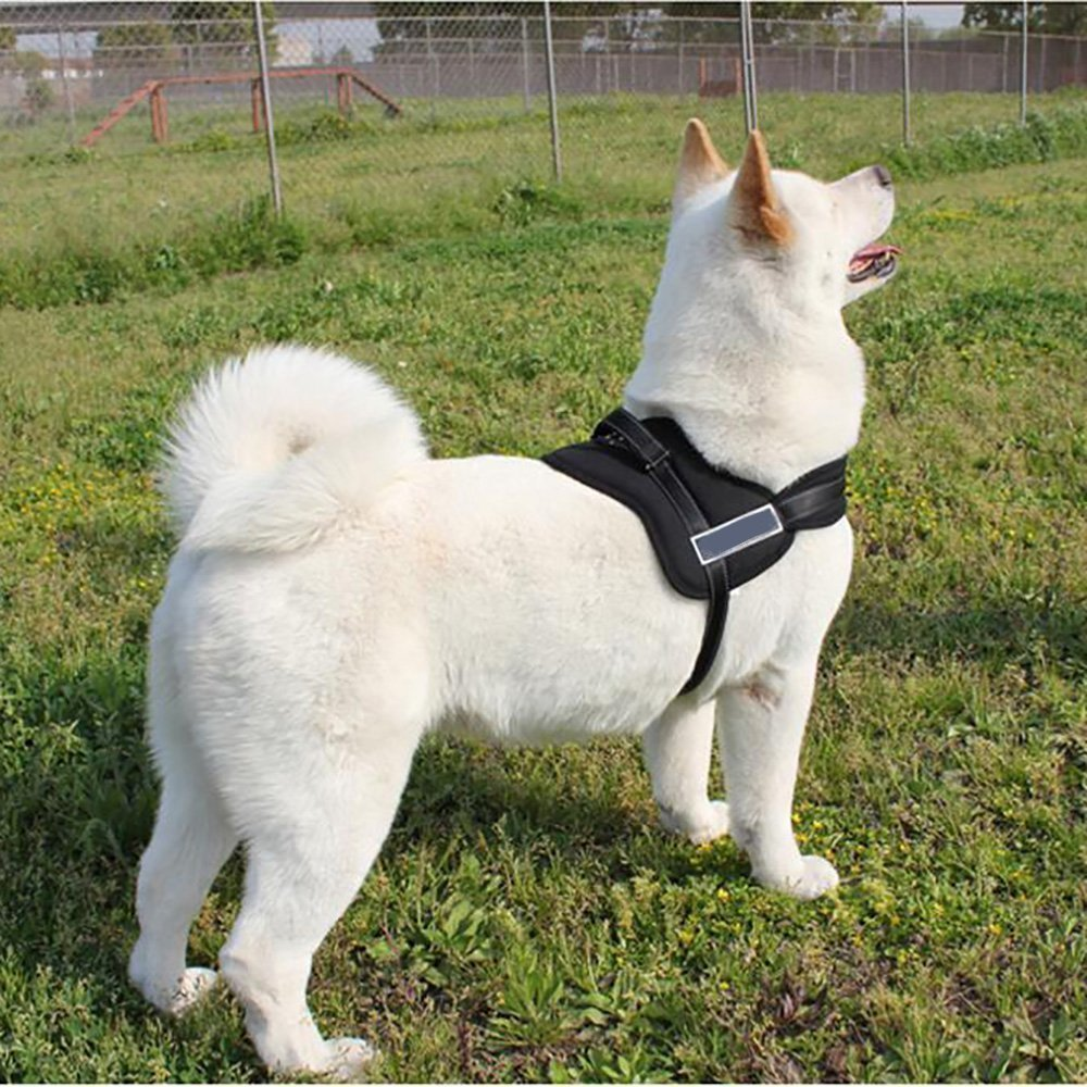 KINGEAR Dog Harness PDK1025 No Pull Harness Dog Leash Padded Pet Walking Harness Heavy Duty for Dogs