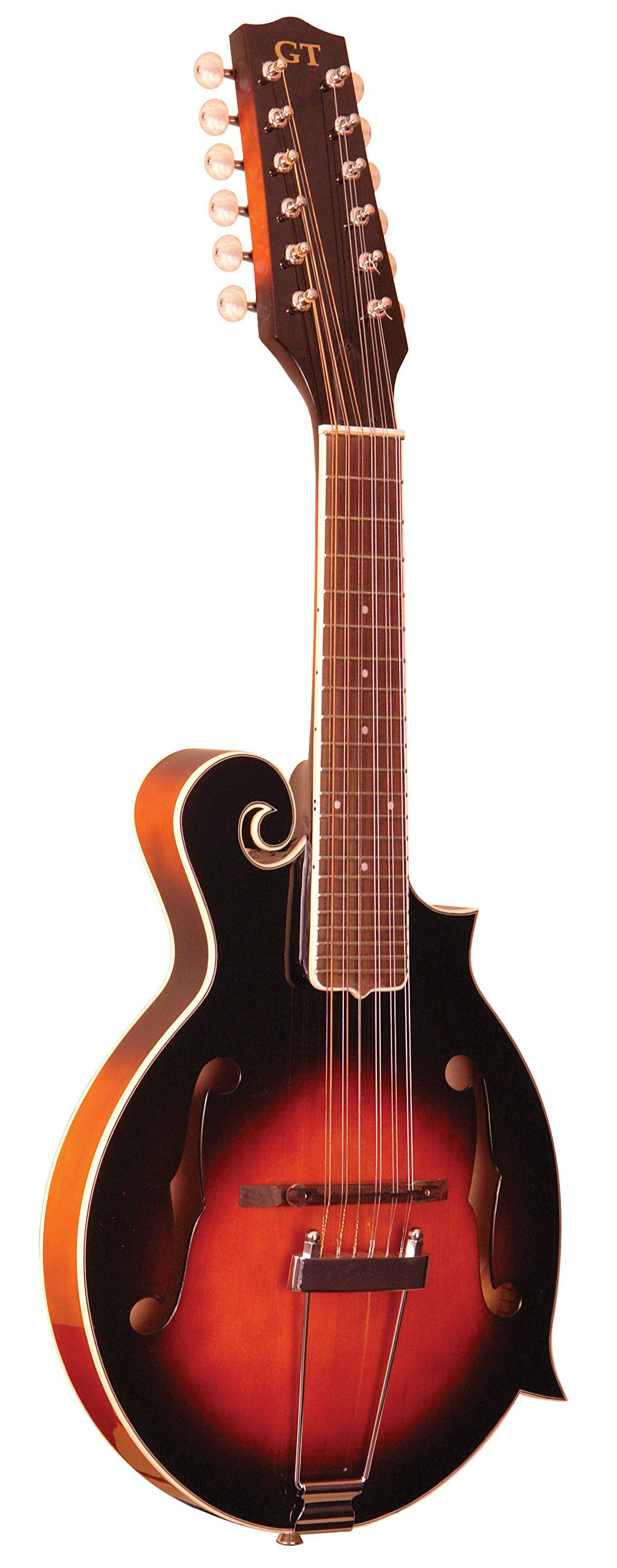 Gold Tone, 12-String Guitar Mandolin (F-12) by Gold Tone (Image #1)