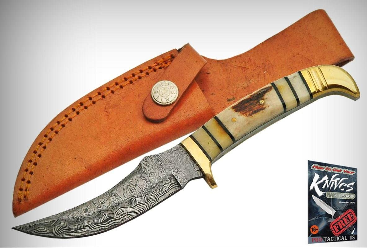 "FIXED-BLADE HUNTING KNIFE8/"" Damascus Steel Blade Bone Walnut Handle Skinner"