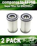 Confezione da 2. Filtri HEPA a cartuccia per gli aspirapolvere Electrolux (alternativa a EF75B, 9001959494)