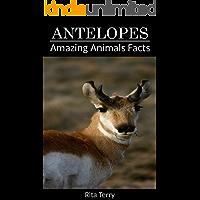 Antelopes: Amazing Photos & Fun Facts Book About Antelopes (Amazing Animals Facts)