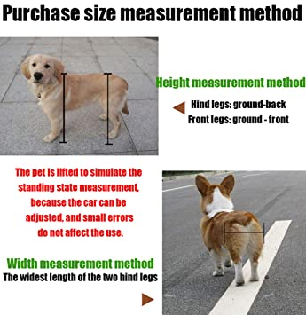 ZHhome Silla de Ruedas para Perros, 1.5kg (3.3lbs) -50kg (110lbs), Adecuado para Perros pequeños Grandes con Patas traseras Mascotas discapacitadas Caminata ...