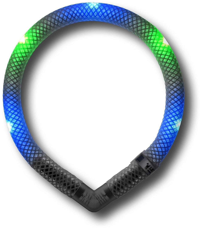 Leuchtie LED Leuchthalsband Mini blau-grü n LED Halsband fü r Hunde 5 LED Halsband fü r Hunde trends and more GmbH