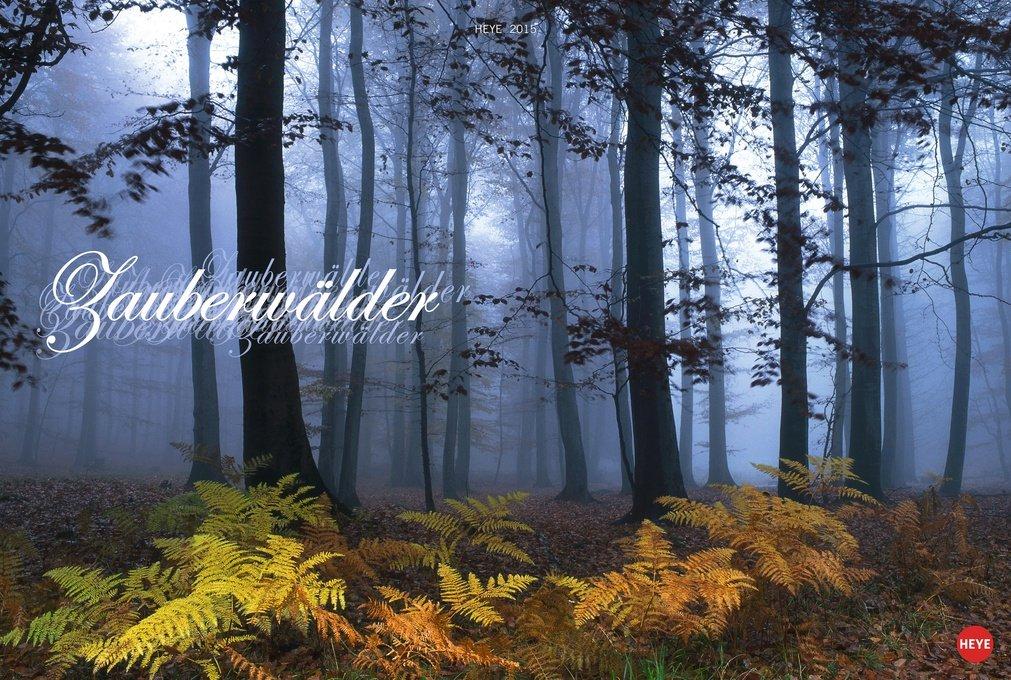Zauberwälder 2015