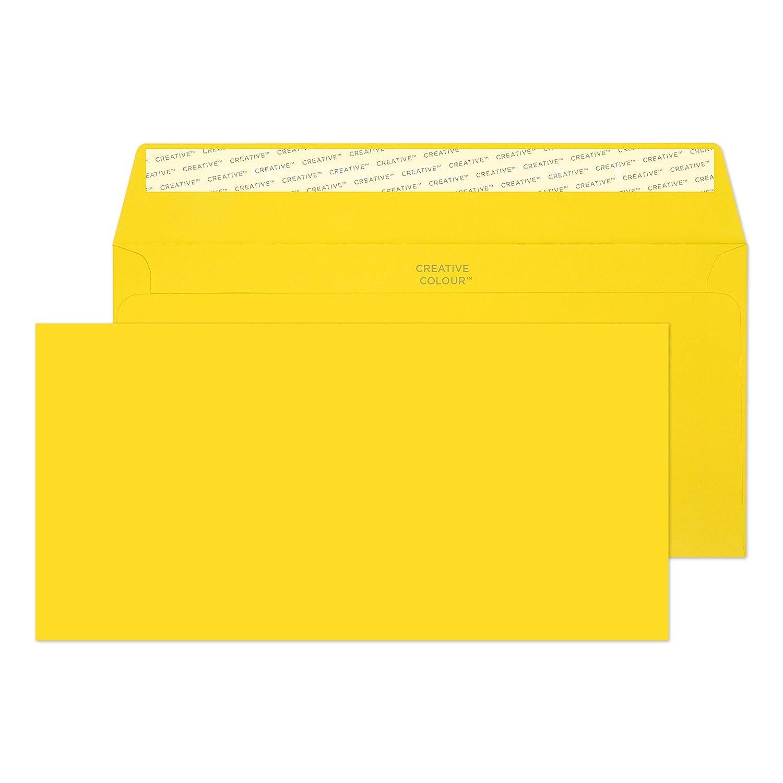 Chalk White 80lb Paper 25255-76 4 1//2 x 9 Inches White Invitation Envelopes Blake Creative Color Peel /& Seal - Pack of 25
