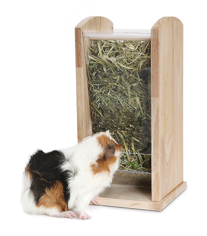 acrylic pig feeder rack co world pet dp living green wood uk medium amazon x supplies hay guinea cm
