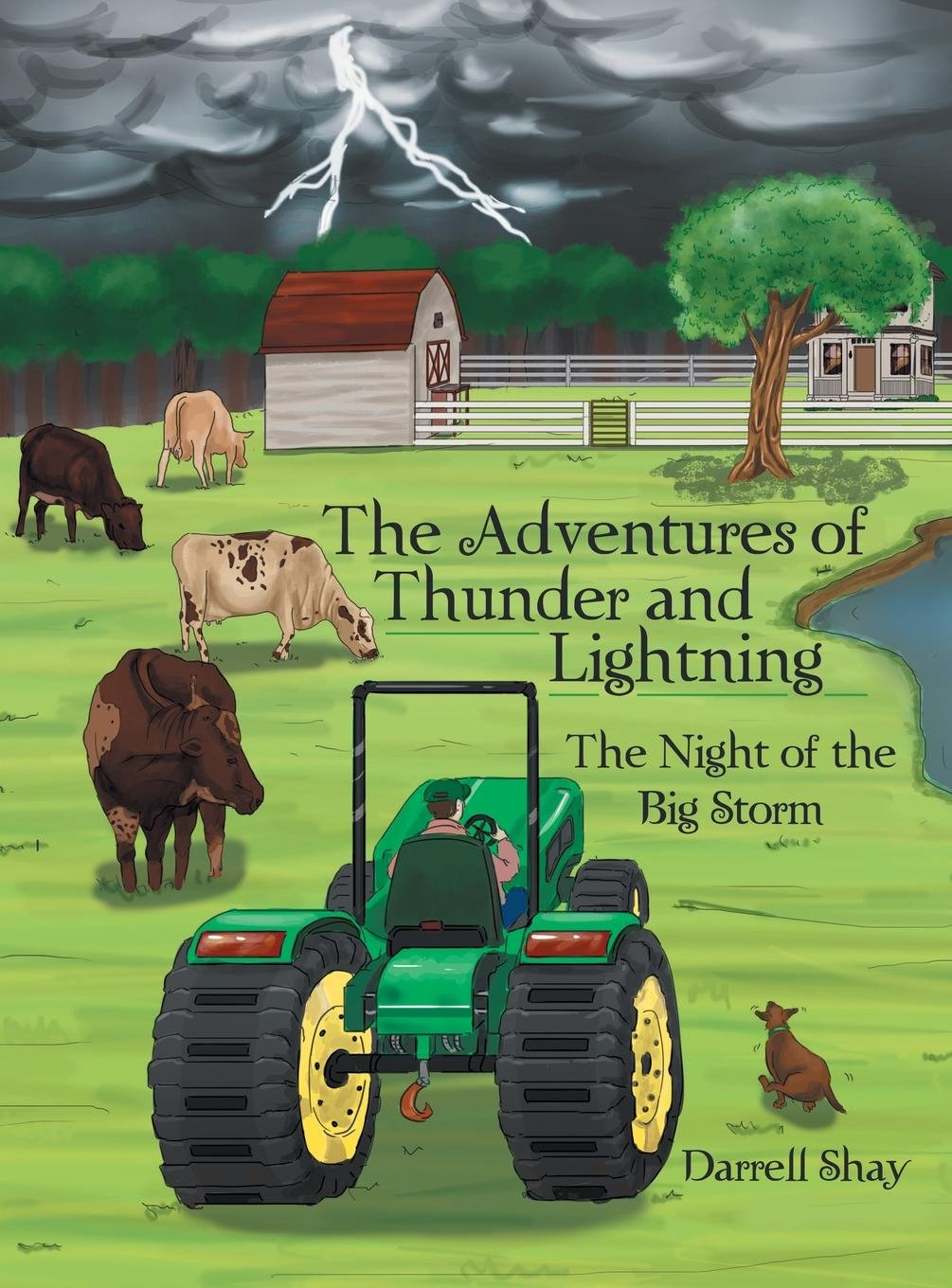 The Adventures of Thunder and Lightning: The Night of the Big Storm ebook
