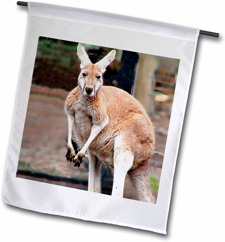 3dRose Red Kangaroo-Garden Flag, 12 by 18-inch (fl_618_1), Varies