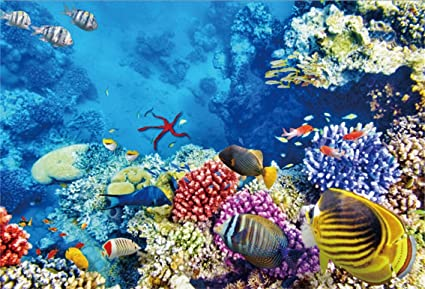 AOFOTO 7x5ft Coral And Tropical Fish In The Sea Backdrop Aquarium Underwater Seascape Photography Background Marin