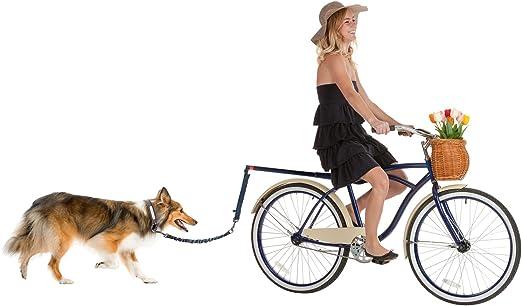 Correa para perro de bicicleta con manos libres, para montar en ...
