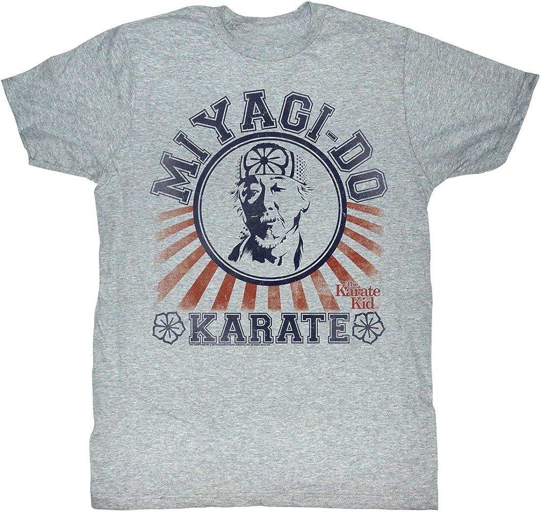 2Bhip Marciales Película de Deportes de Artes Estilo de época Miyagi-do Camiseta de Karate 80 para Hombre XX-Grande Gris: Amazon.es: Ropa y accesorios