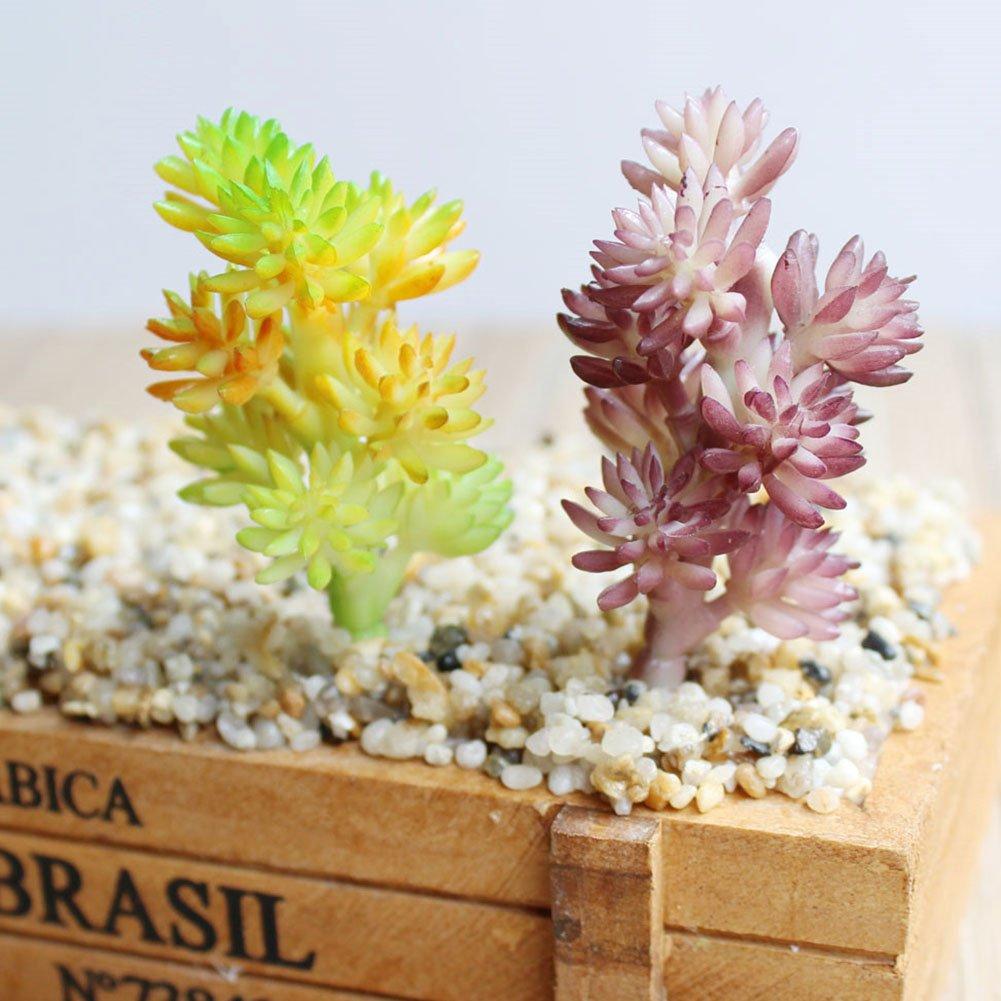 (2 pcs-1) - Dutch Brook 5Pcs Different Succulents Artificial Cactus Plants for Office Home Garden Decor (Sent Randomly) (2 pcs-1) B07B4X761J 2 pcs-1