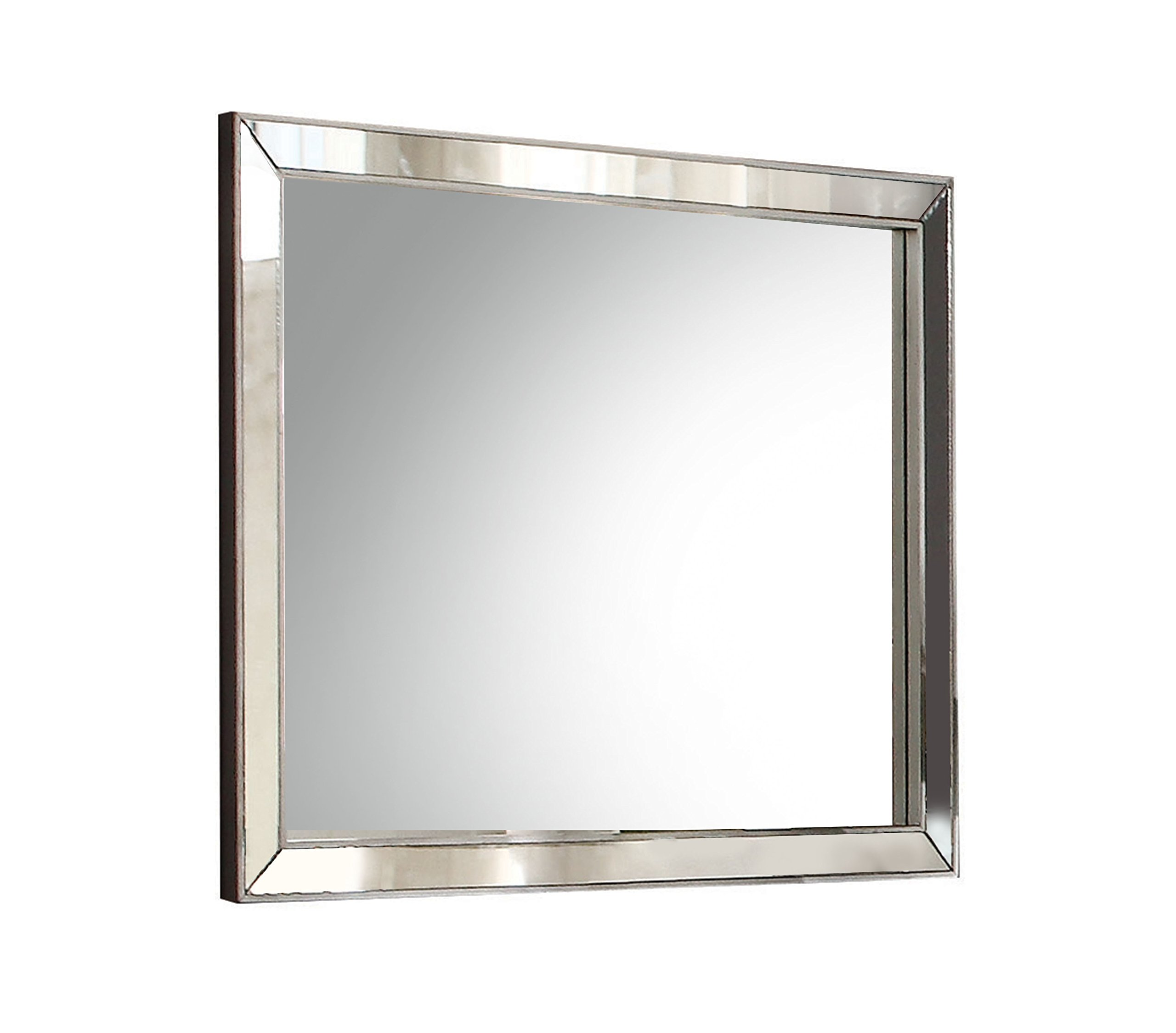 Acme Furniture 24844 Voeville II Mirror, Platinum by Acme Furniture