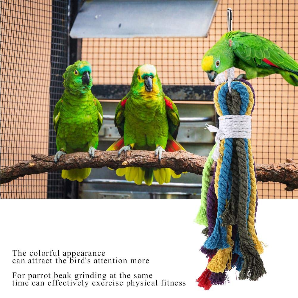 Toys Pet Supplies Heepdd Parrot Colorful Rope Toy Natural Cotton Preening Grooming Ropes Bird Chewing Biting Toys Cage Accessories For S African Grey Cockatoos Conure Lovebird Lory