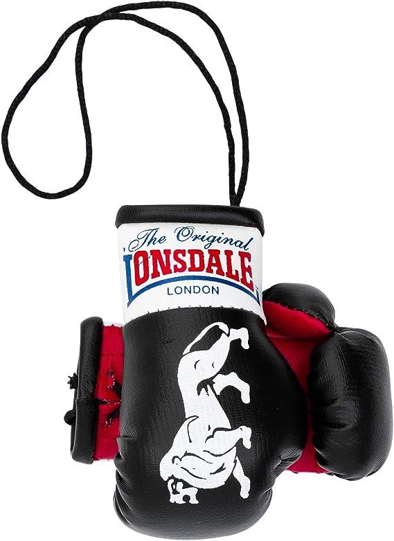 Lonsdale London MINI BOXING GLOVES Men mini boxing gloves hanging decoration Souvenir Red, tamaño:OneSize: Amazon.es: Ropa y accesorios