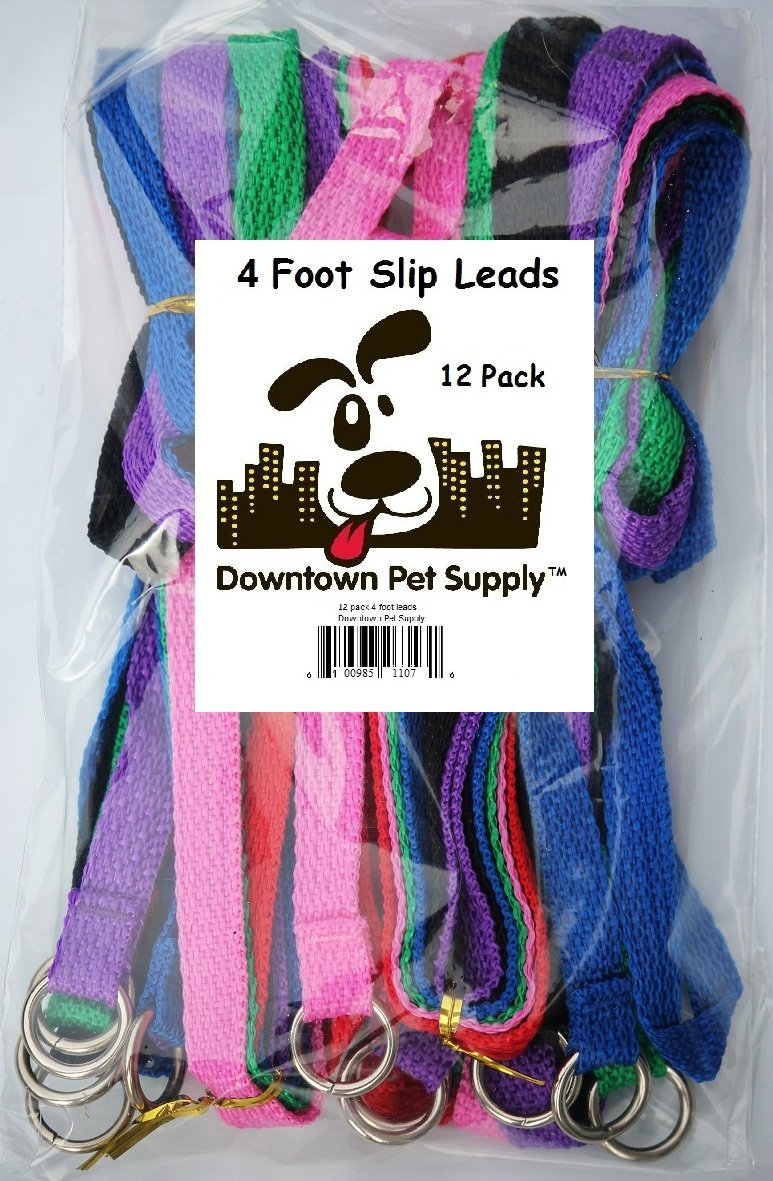 Slip Leads, Kennel Leads with O Ring (12 pack) for Dog Pet Animal Control Grooming, Shelter, Rescues, Vet, Veterinarian, Doggy Daycare - 4 foot Length x 5/8 inch Width, by Downtown Pet Supply