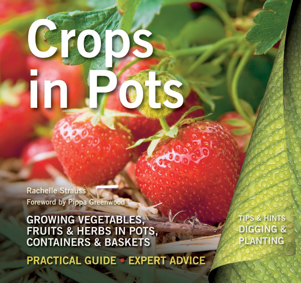 Crops in Pots: Practical Guide, Expert Advice (Digging and Planting)