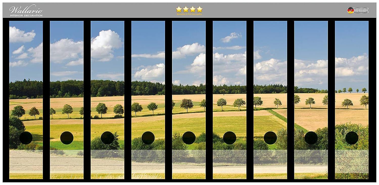 Adhesivo diseño de campo de archivador de la parte de la espalda de paisaje de bajo cielo Azul en Calidad superior - tamaño 54 x 30 cm, compatible con los ...