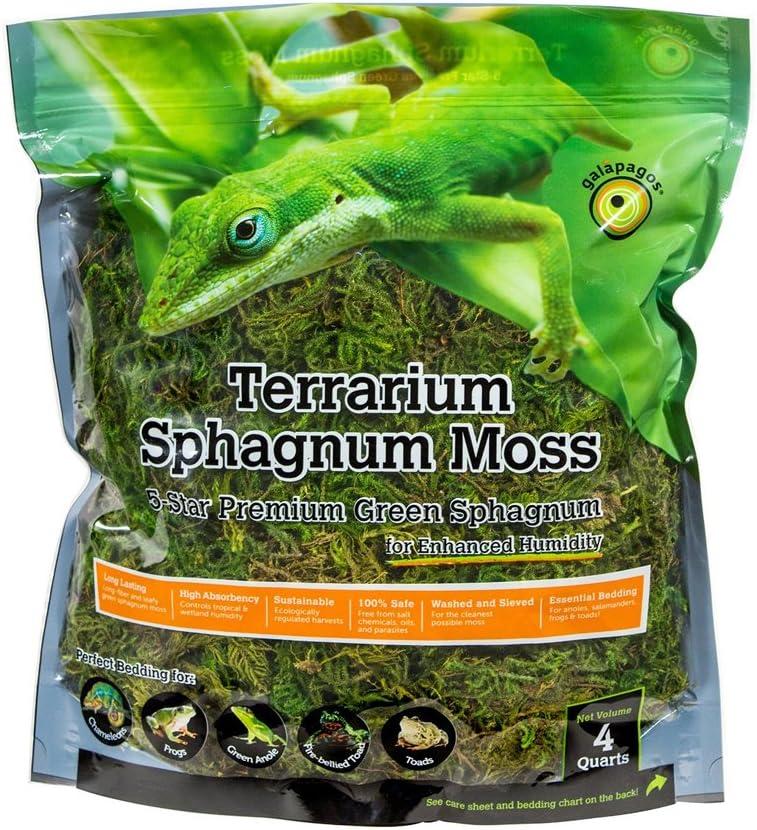Galápagos Terrarium Sphagnum Moss