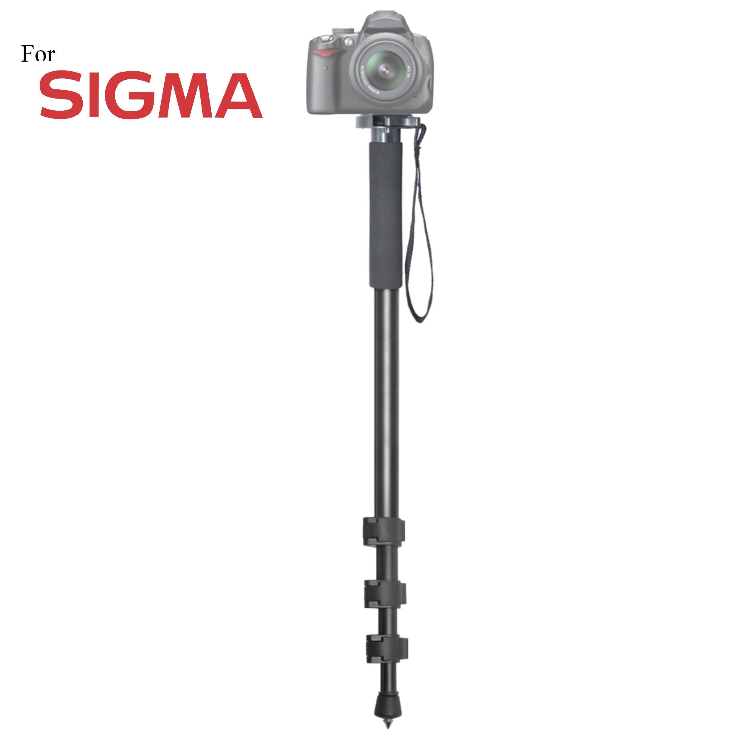 Versatile 72'' Monopod Camera Stick + Quick Release for Sigma DP2x, DP3 Merrill, dp3 Quattro, sd Quattro, sd Quattro H, SD1, SD1 Merrill, SD10, SD14, SD15, SD9h Cameras: Collapsible Mono pod, Mono-pod