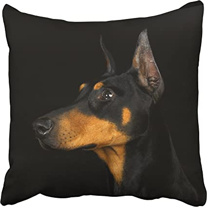 Amazon Com Emvency Decorative Throw Pillow Cover Square Size 16x16 Inches Black And Tan Doberman Pinscher Pillowcase With Hidden Zipper Decor Fashion Cushion Gift For Home Sofa Bedroom Couch Car Toys Games