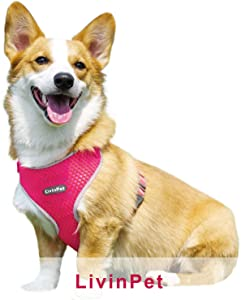 LivinPet No-Choke Dog Vest Harness w/Reflectieve Accents, D-Ring, Adjustable Straps and Quick-Release Buckles for Girl/Boy Puppies of Small/Medium/Large Breeds - Heavy Duty, Easy On/Off, Cooling