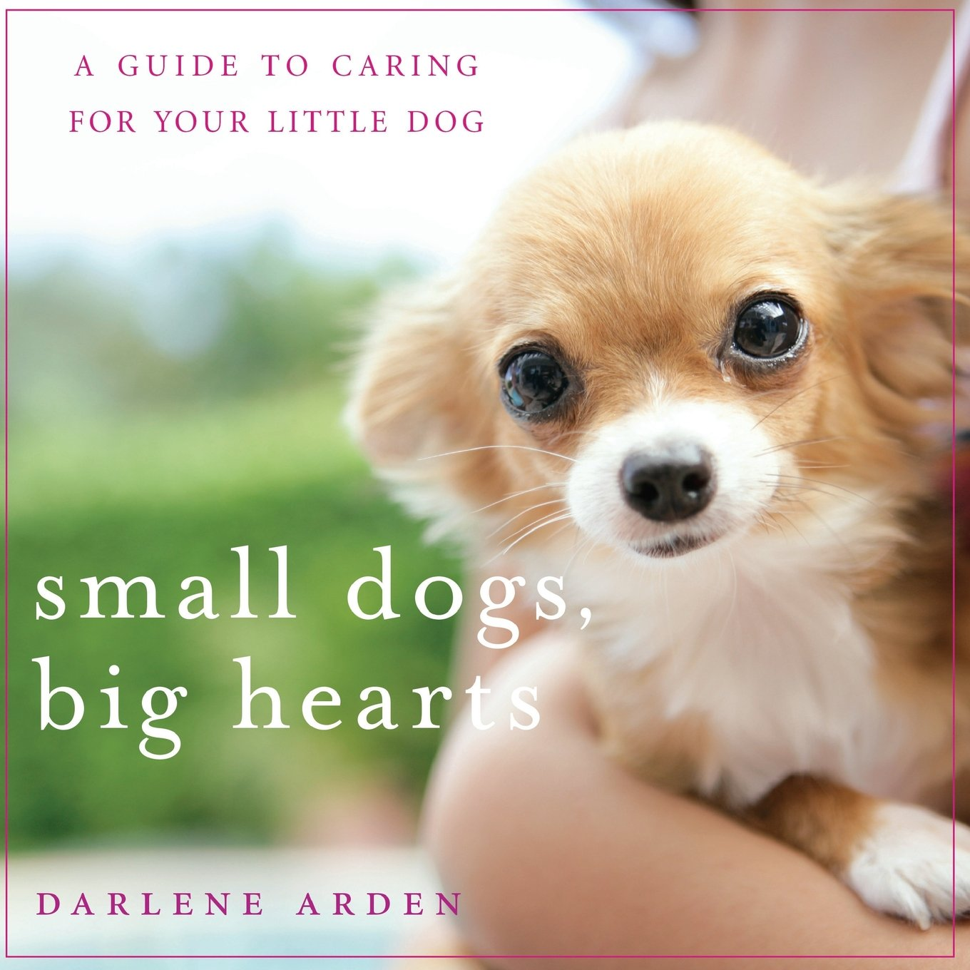 Small Dogs Big Hearts Revised product image