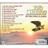 Un Falco Chiuso in Gabbia [Import anglais]