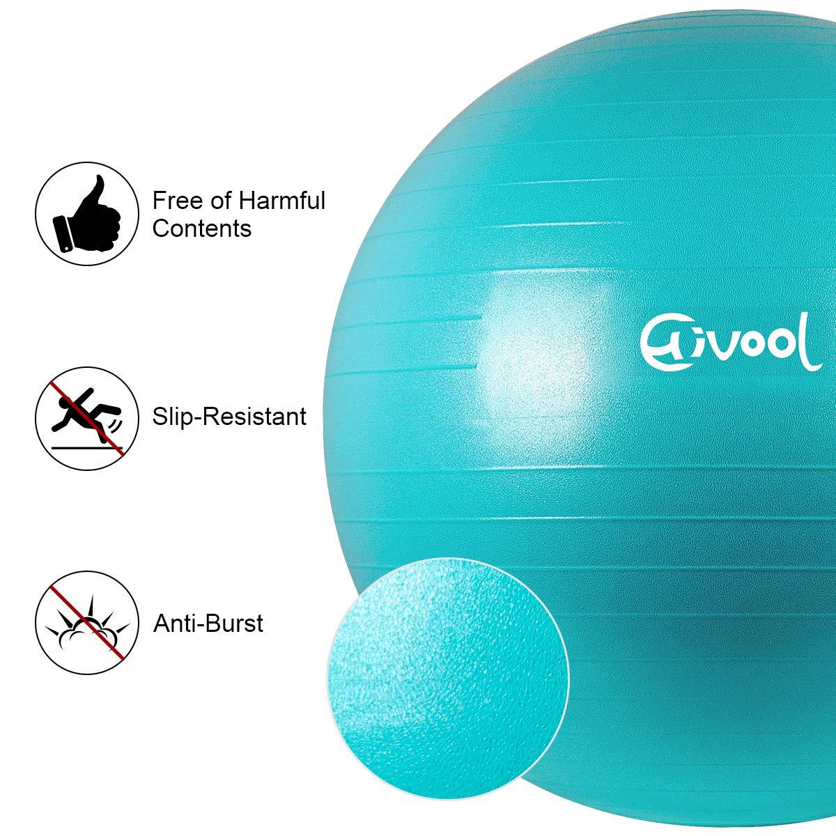 Hivool Pelota de Ejercicio para Fitness 55-85 cm syoga,Bola Natal y Bomba r/ápida