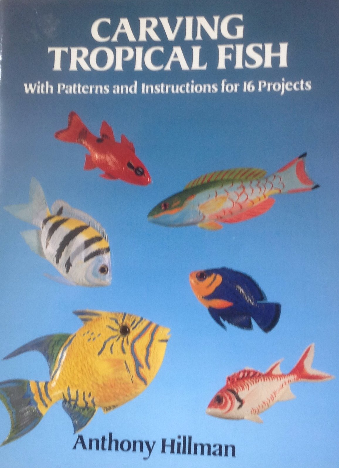 Carving Tropical Fish: With Patterns and Instructions for 16 Projects:  Anthony Hillman: 9780486270944: Amazon.com: Books