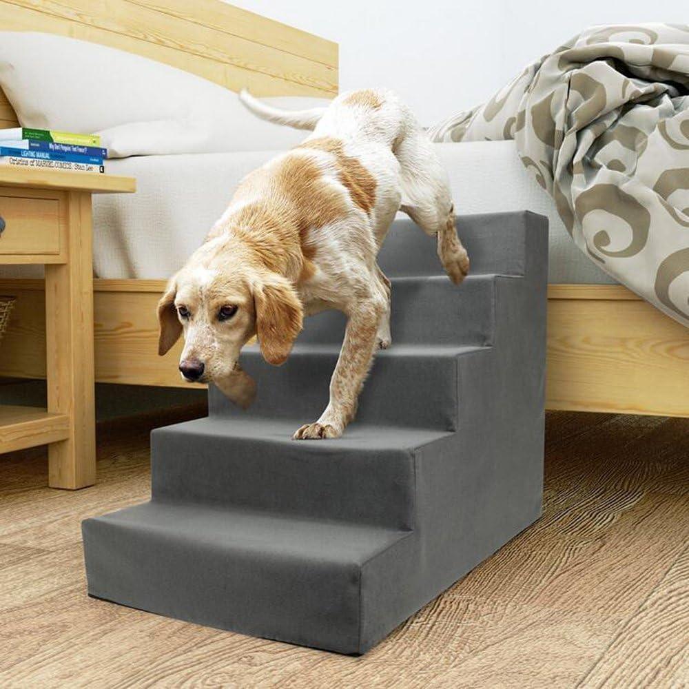 treppe hund