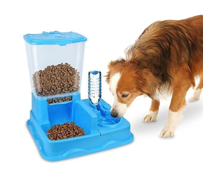 MEDIA WAVE store 3028 Dispensador automático de Alimentos y Agua para Perros y Gatos (Azul): Amazon.es: Hogar