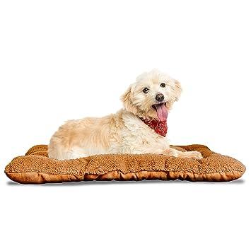 Amazon.com: Cama y almohada para perro o gato Furhaven Nap ...