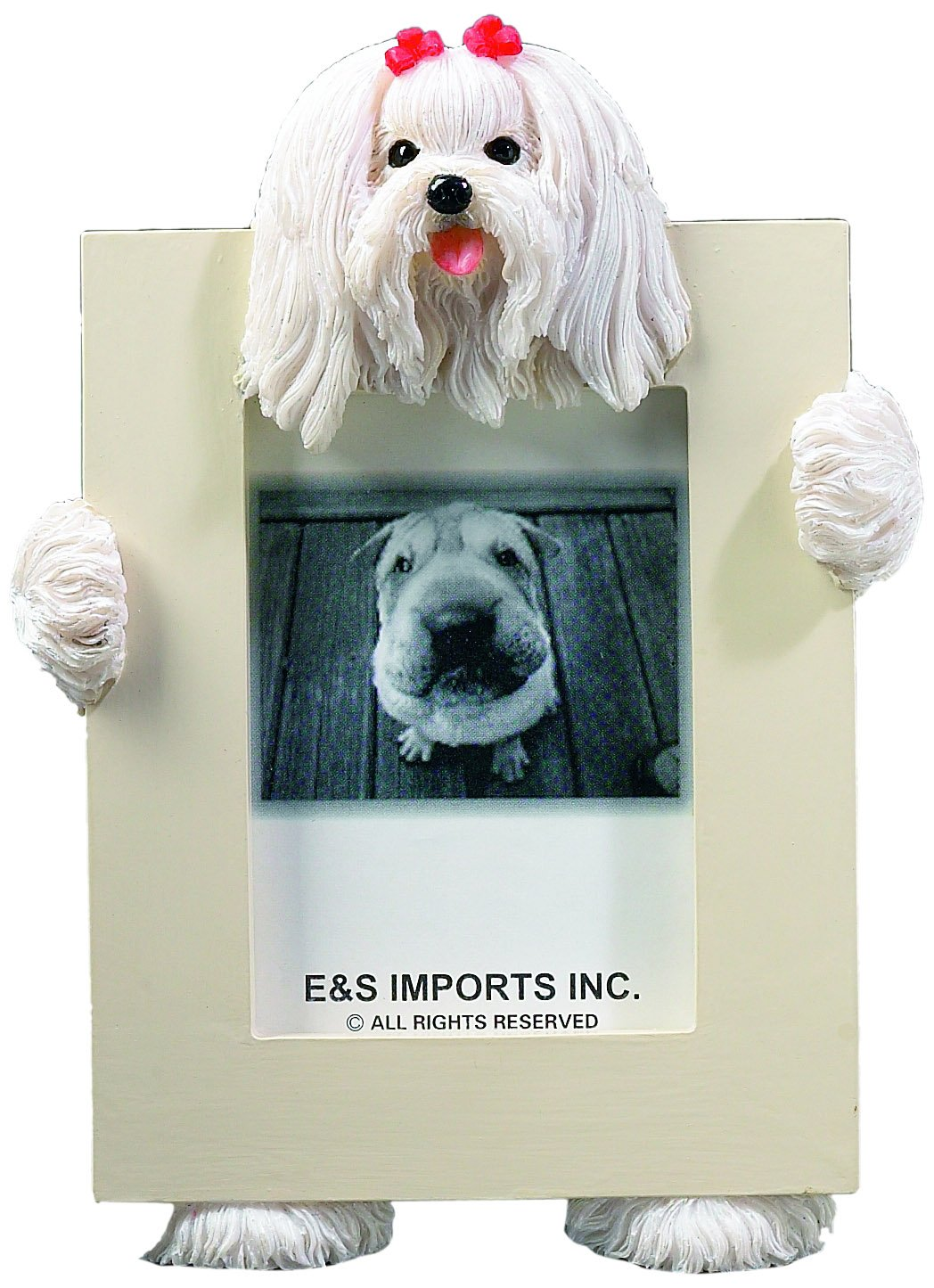 Maltese Picture Frame Holds Your Favorite 2.5 by 3.5 Inch Photo, Hand Painted Realistic Looking Maltese Stands 6 Inches Tall Holding Beautifully Crafted Frame, Unique and Special Maltese Gifts for Maltese Owners