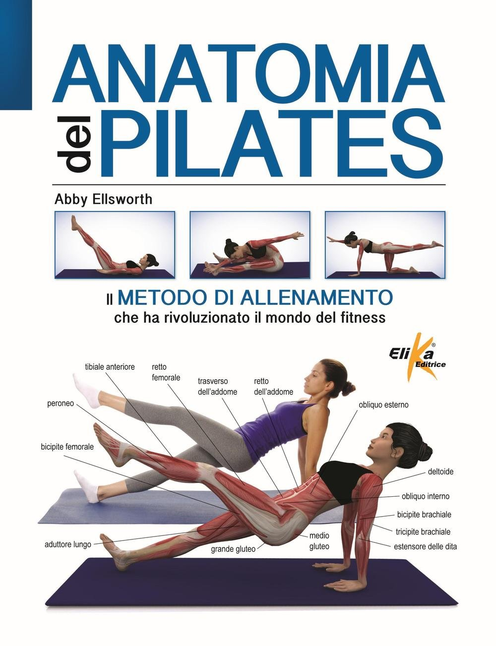 Anatomia del pilates: Abby Ellsworth: 9788898574360: Amazon ...