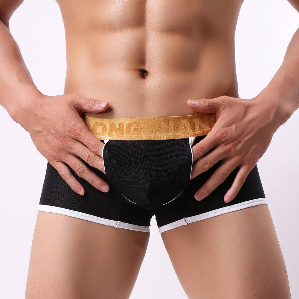 Birdfly Mens Hi-Q Smooth and Soft Ice Silk Fabric Men Underpant Underwear Briefs XL, Black
