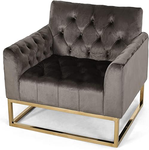 Christopher Knight Home Dawn Modern Velvet Arm Chair